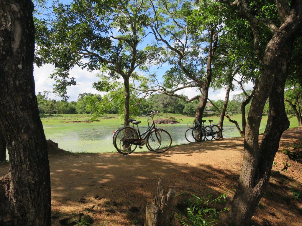 Das kleinere Wasserbecken vor dem Gal Vihara war Teil eines ausgeklügelten Bewässerungssystems