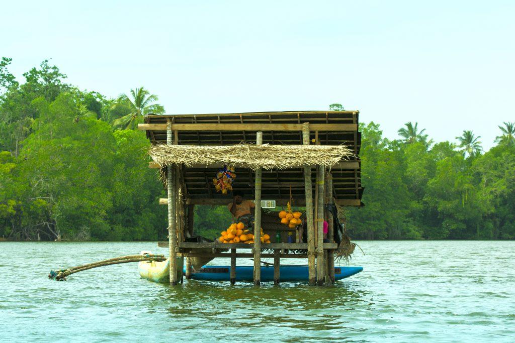 Der Kokosnussstand mitten in der Lagune von Balapitiya.